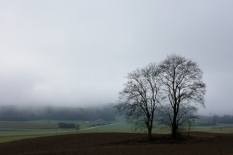 Bei Lindengraben