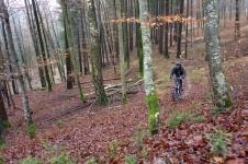 Hubertussteig (Naturpark Westliche Wälder)