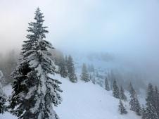 Himmelsblau reflektiert bereits im Nebel