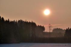 Die Sonne senkts sich tief über den spätwinterlichen Hartwald