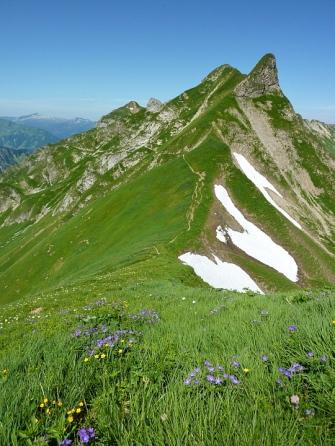 Schön lässt sich erkennen wie sich der Laufbacher Eck Weg um die Bergflanke windet