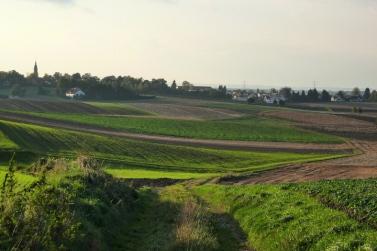 Blick vom Gidiweg auf Mering