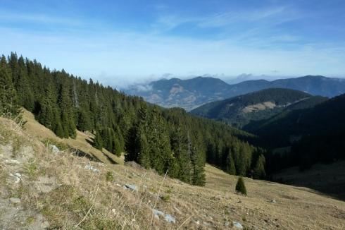 Blick über den Steckenberg hinüber zum Hörnle und Aufacker