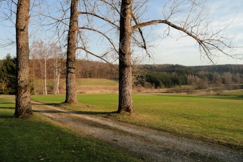 Bei Burgwalden