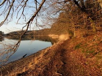 Trail entlang der Weiher im Anhauser Tal