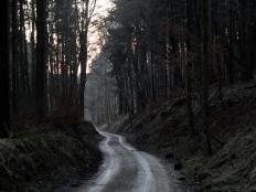 Hohlweg hinab zur Maderquelle