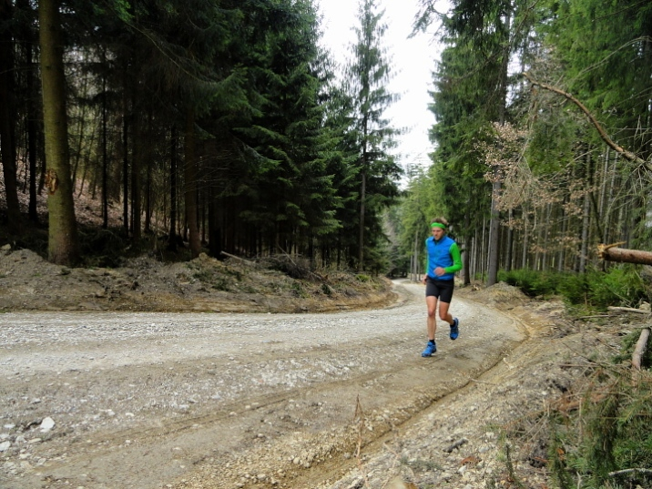 Steile Forststraßen bei Neusäß