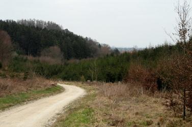 Typische Naturparkplandschaft der Westlichen Wälder