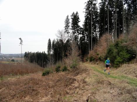 Hier verläuft ein besonders schöner Trail mit BLick aufs Lechfeld