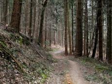 Wanderweg bei Neusäß