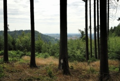 Blick Richtung Loderberg