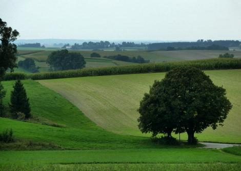 21km um Mering und Kissing: Tertiäres Hügelland