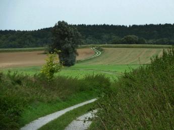 21km um Mering und Kissing: Weiter Richtung Erlauholz