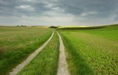 16km durch den Meringer Hartwald: Richtung Meringerzell
