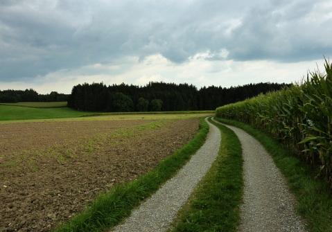 16km durch den Meringer Hartwald: Von Reifersbrunn Richtung Hartwald