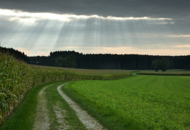 16km durch den Meringer Hartwald: Wolkenspiele bei Baierberg