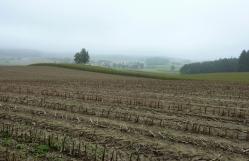 Blick über die tertiären Hügel des Wittelsbacher Landes nach Eurasburg