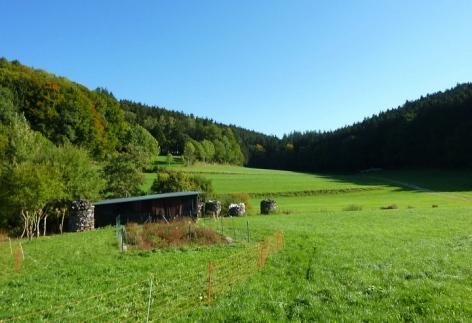Bei Bauhofen
