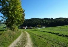 Abstieg nach Vorderschellenbach