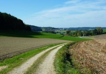 Taleinschnitt Richtung Hinterschellenbach