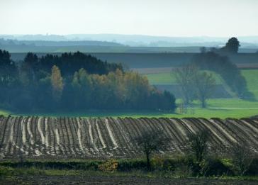 Blick über das tertiäre Hügelland