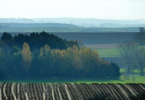 Blick über das herbstliche tertiäre Hügelland