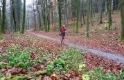 Anstieg Richtung Straßberg