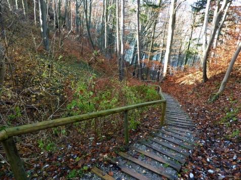 Naturtreppe ins Lechtal