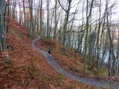 Schöner Abschnitt des Lechhöhenwegs bei Landsberg