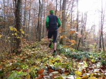 Trail durch Laubwald