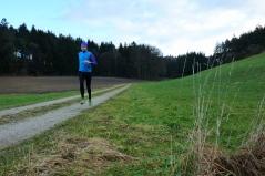 Das leicht hügelige Gelände des Landmannsdorfer Forsts erlaubt etwas höher intensive Läufe