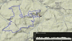 trailrun_wittelsbacherland_bonholz_17km_350hm
