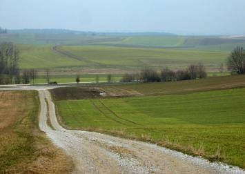 Jeder Grünton entzückt ist die restliche Landschaft doch noch in tristen braun und ocker gefärbt