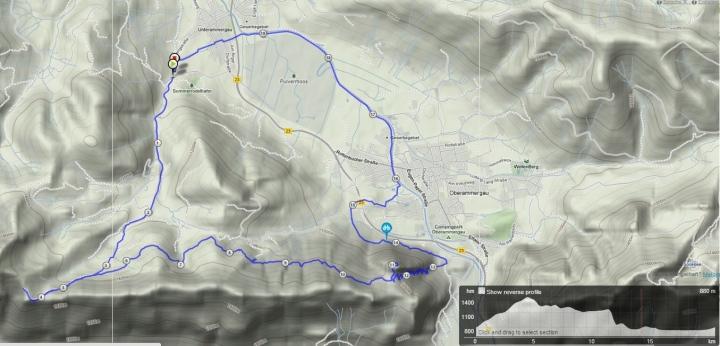 berglauf_kc3b6nigssteig_21km_1200hm