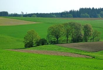 Bachener Hinterland