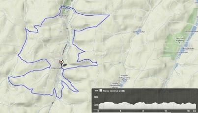 trailrun_westwoods-dc3b6pshofen-schwarzachtal_17km_450hm