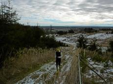 Anstieg vom Wertachtal auf einen Hügelzug der Westlichen Wälder