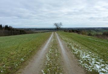 Auf einem Hügelzug Richtung Leuthau