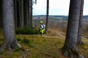 Very nice: Trail with a view in the Western Wood of Naturpark Augsburg