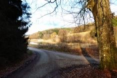 Anhauser Tal, Blick auf Burgwalden