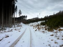 Einer meiner Lieblingsanstiege in den Westlichen Wäldern, am Anfang und am Ende bitter steil, dazwischen langezogen